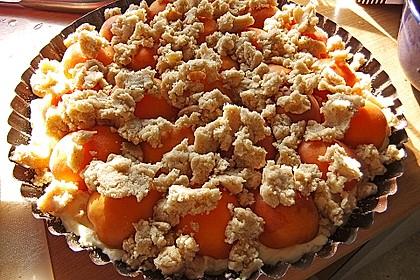 Tarte aux Abricots 101