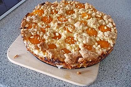 Tarte aux Abricots 66