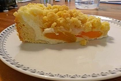 Tarte aux Abricots 76