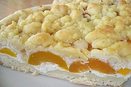 Tarte aux Abricots 73