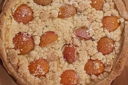 Tarte aux Abricots 30