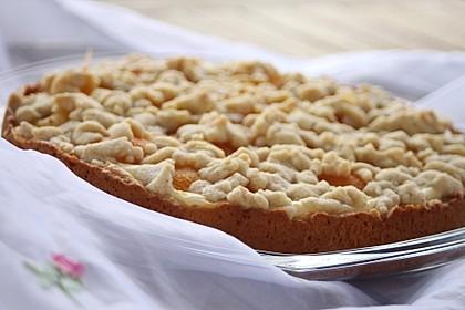 Tarte aux Abricots 12