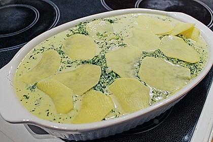 Kartoffel - Spinat - Auflauf 31