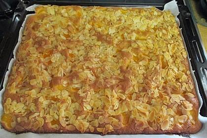 Obst - Blechkuchen 5