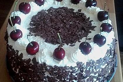 Schwarzwälder - Kirsch - Torte 8