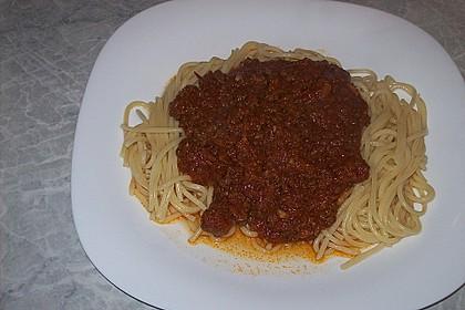 Bolognese 5
