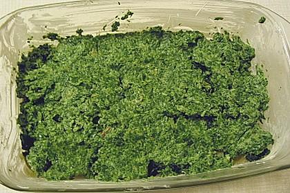 Spinat - Lachs - Auflauf 4