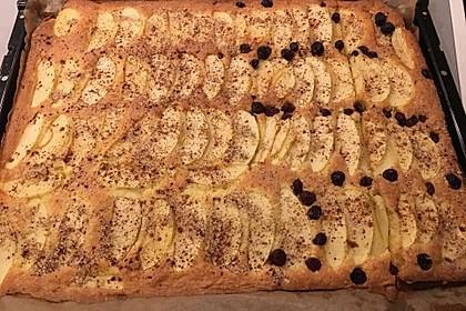 Obst-Blechkuchen 13