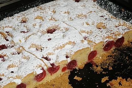 Obst-Blechkuchen 27