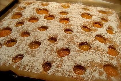 Obst-Blechkuchen 7