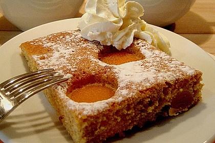 Obst-Blechkuchen 5