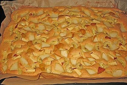 Obst-Blechkuchen 9