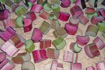 Obst-Blechkuchen 34