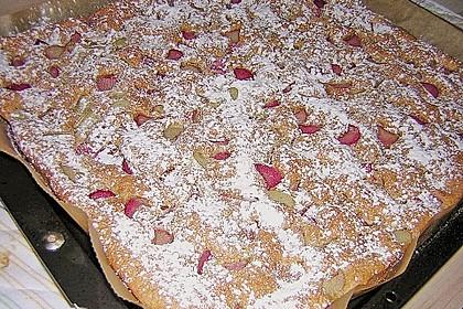 Obst-Blechkuchen 28