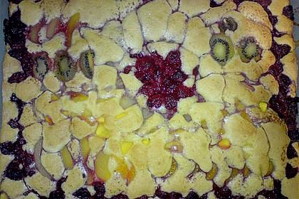 Obst-Blechkuchen 29