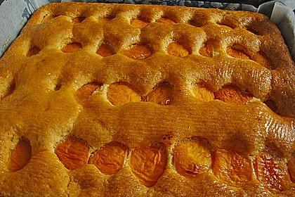 Obst-Blechkuchen 8