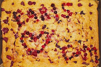 Obst-Blechkuchen 22