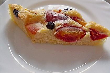 Obst-Blechkuchen 17