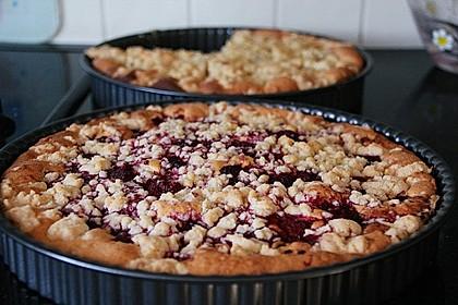 Obst-Blechkuchen 1