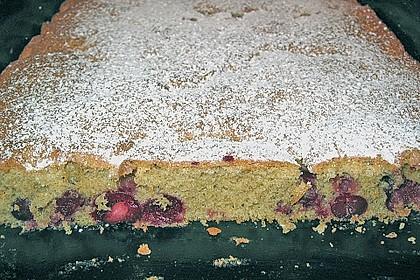 Obst-Blechkuchen 23