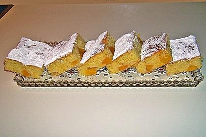 Obst-Blechkuchen 16