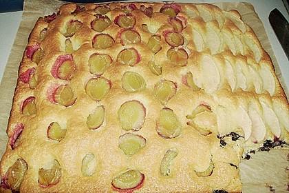 Obst-Blechkuchen 32