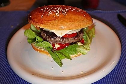 Hamburger 6