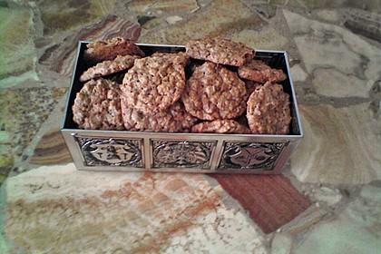 Haferflocken Cookies 16