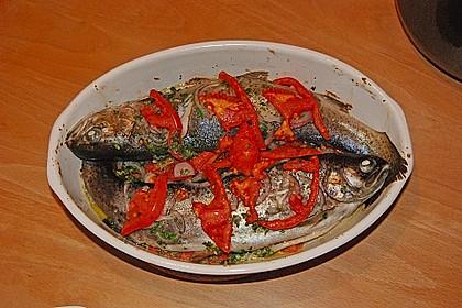 Würzige Forelle aus dem Ofen 1