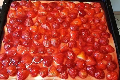 Erdbeerkuchen mit Vanillepudding 2