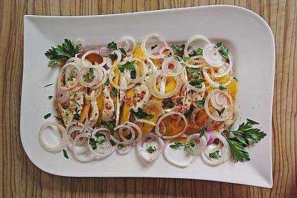 Büffelmozzarella mit Mangoscheiben und  fruchtigem Dressing 23