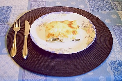 Cannelloni mal anders 1