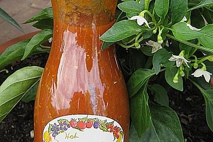 Hot Zucchini - Salsa 10
