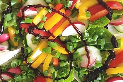 Zucchini - Tomaten - Paprika - Salat 1