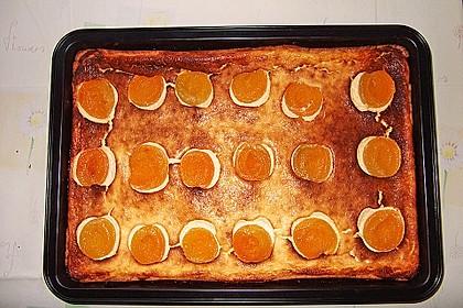 Käsekuchen bzw. Quarkkuchen 68