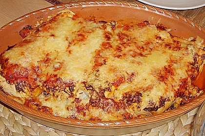 Enchilada verdura 27