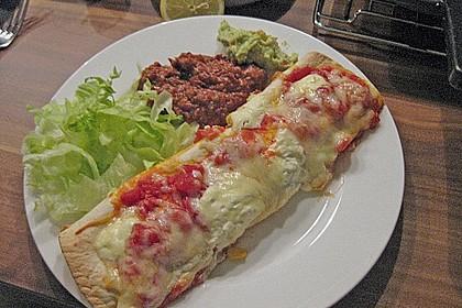 Enchilada verdura 52