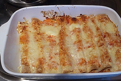 Enchilada verdura 89