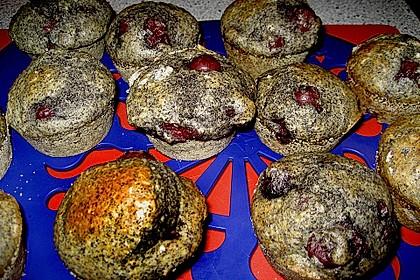 Mohn - Kirsch - Muffins 7