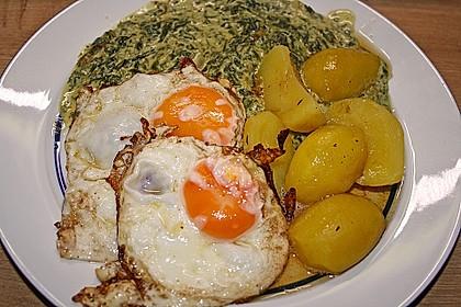 Kartoffeln, Spinat, Käse und Ei 4