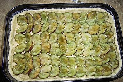Omas Streusel - Zwetschgenkuchen mit Mürbteig 10