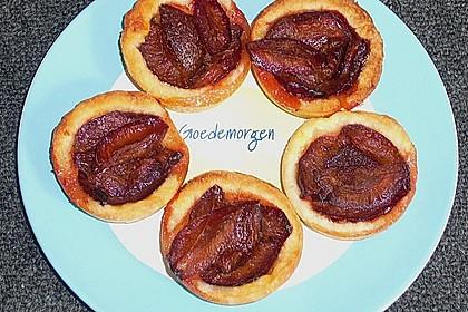 Pflaumenkuchen mit Quark - Öl - Teig 24