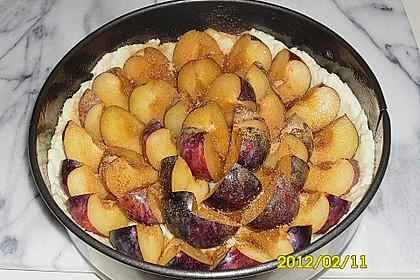 Pflaumenkuchen mit Quark - Öl - Teig 22