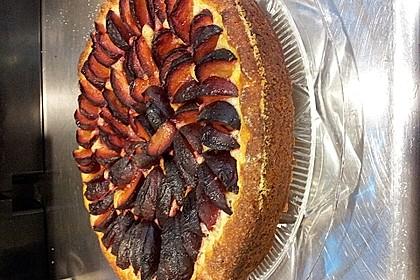 Pflaumenkuchen mit Quark - Öl - Teig 23