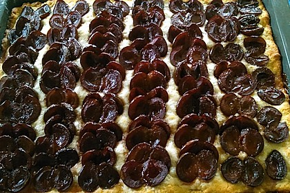Pflaumenkuchen mit Quark - Öl - Teig 11