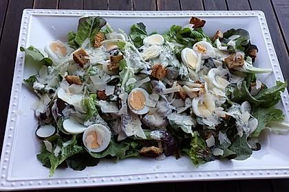 Caesar's Salad 12