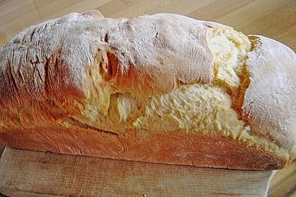 Goldener Toast 128