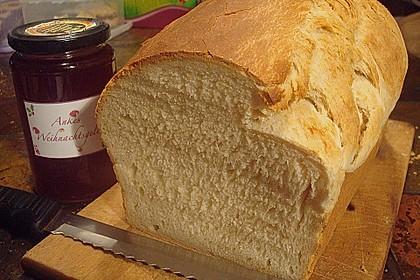 Goldener Toast 7
