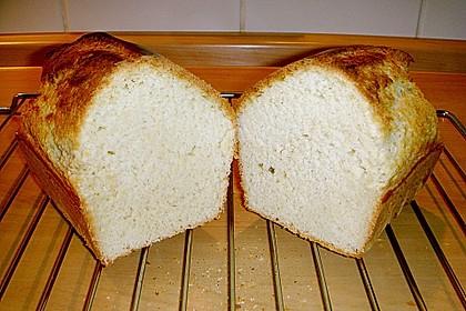 Goldener Toast 131
