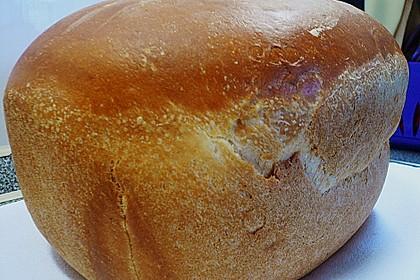 Goldener Toast 194